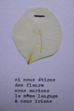 Marion Renauld - Poetales