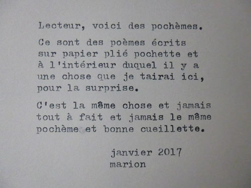 Marion Renauld - Pochemes de terre