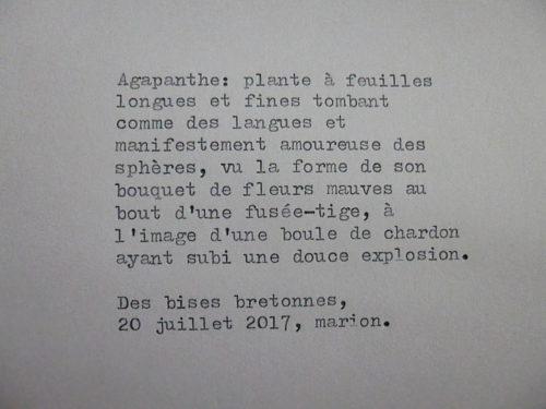 Marion Renauld - Postes paimpolaises