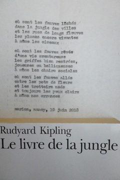 Marion Renauld - l'indénombrable évocation des titres