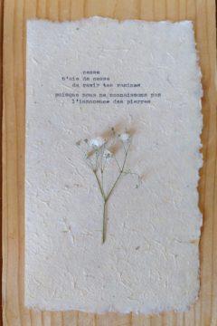 Marion Renauld - Irrésolutions 3