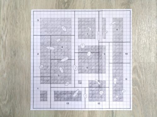Marion Renauld - puzzle transfrontalier 5